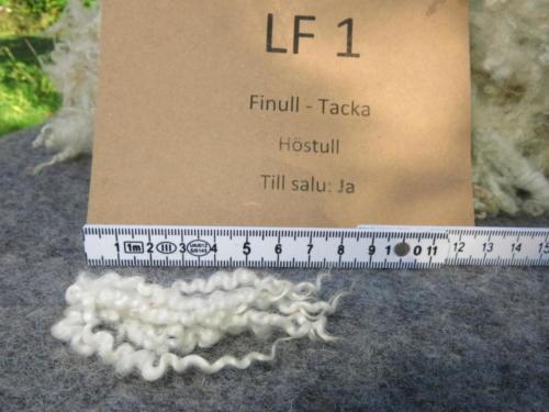 58 LF 1 Stapel