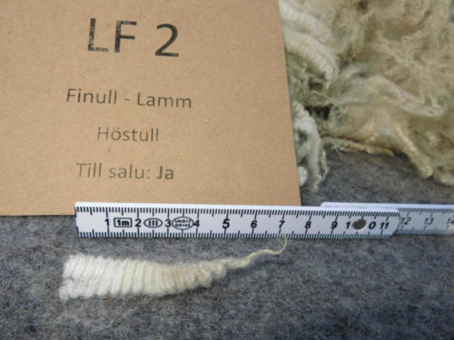 Guld LF 2 Stapel